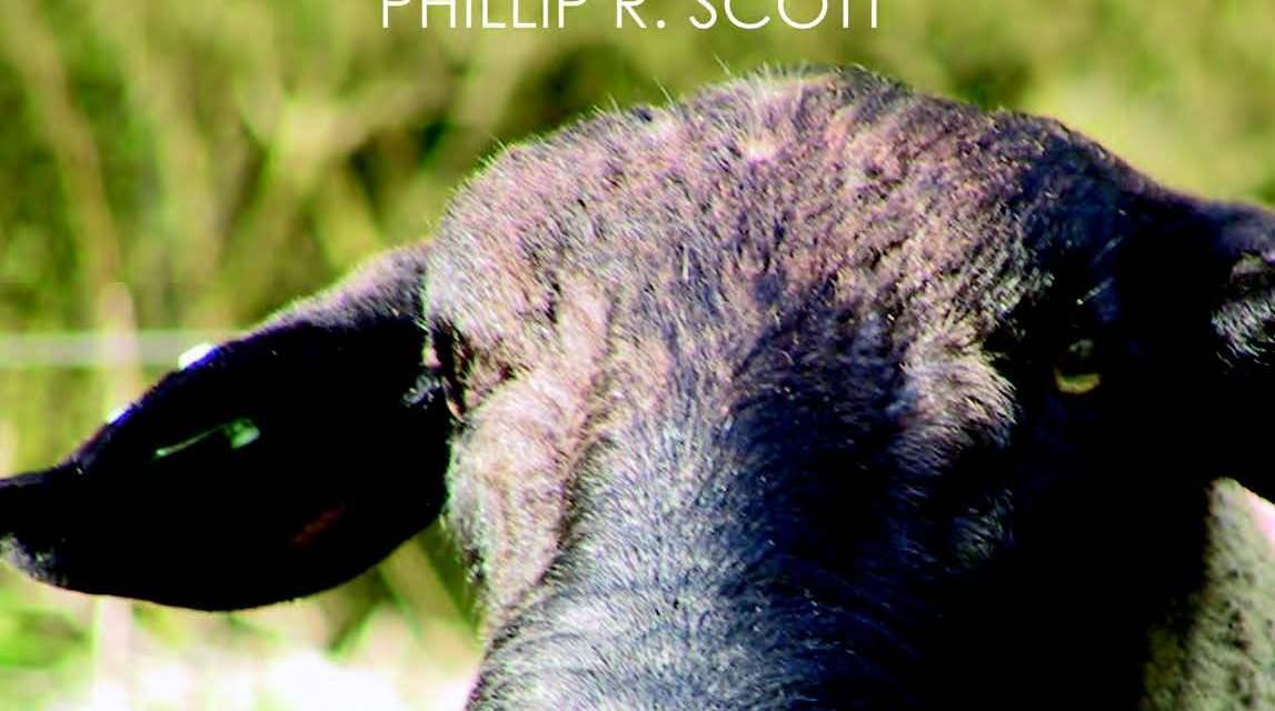 Sheep Medicine 2nd Edition PDF