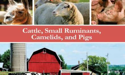 Farm Animal Anesthesia: Cattle, Small Ruminants, Camelids, and Pigs