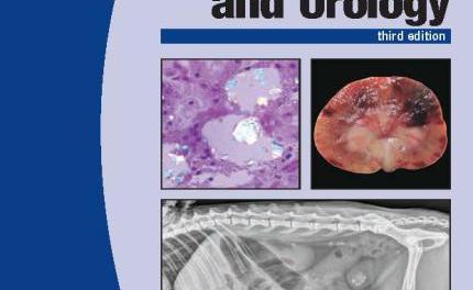 Canine and Feline Nephrology and Urology 3rd Edition