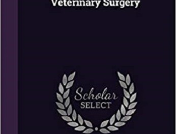 Veterinary Surgery By Dollar's