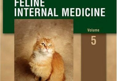 Consultations in Feline Internal Medicine 5th edition
