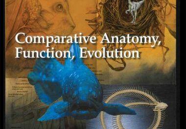 Vertebrates – Comparative Anatomy, Function, Evolution 8th Edition