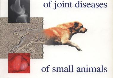 Diagnosis and Treatment of Joint Diseases of Small Animals