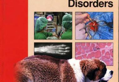 Canine and Feline Musculoskeletal Disorders