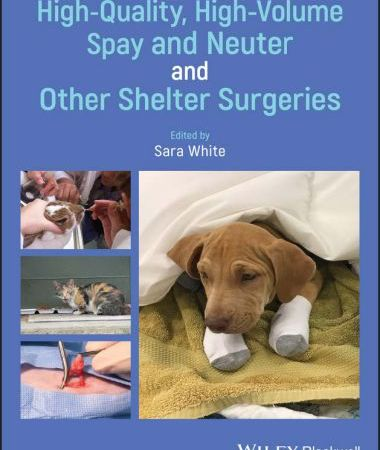 High quality, high volume spay & neuter & other shelter surgeries