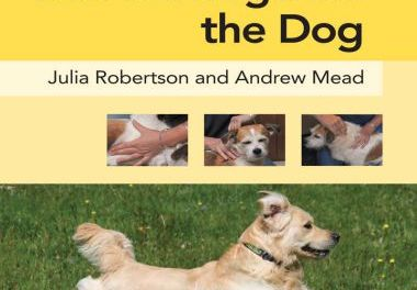 Physical Therapy and Massage for the Dog 1st Edition