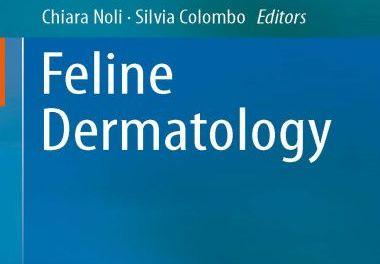 Feline Dermatology 1st Edition