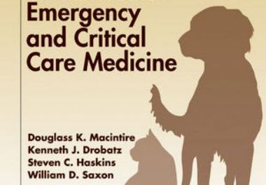 Manual of Small Animal Emergency and Critical Care Medicine 2nd Edition