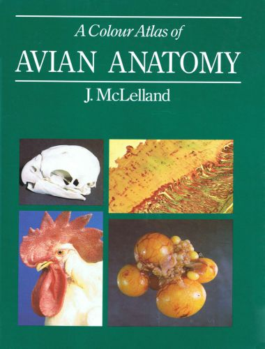 A Colour Atlas of Avian Anatomy 1st Edition