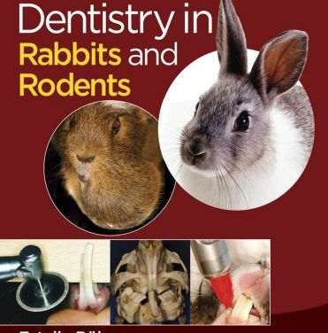 Dentistry in Rabbits and Rodents 1st Edition