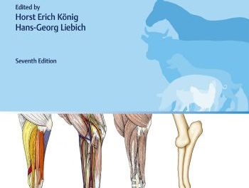 Veterinary Anatomy of Domestic Animals Textbook and Colour Atlas 7th Edition