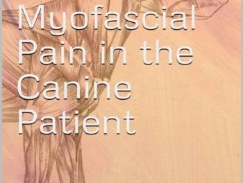 A Clinicians Guide to Myofascial Pain in the Canine Patient