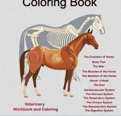 Horse Anatomy Coloring Book 1st Edition