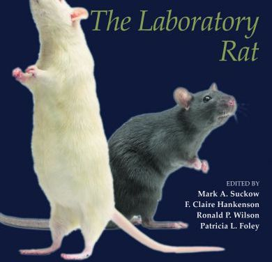 The Laboratory Rat 3rd Edition