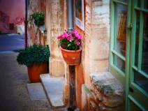 A small pot with flowers in Rousillon