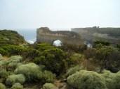 Vegetation ottomans