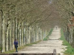 Avenue-Versailles, France