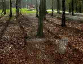 National Park, Hoge Veluwe