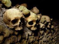 Walls, Paris Catacombs