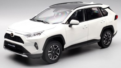 Photo de 1/18 : Paudi sort le Toyota RAV4 de 2019