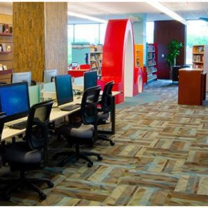 Certified Professional In Digital Library Information System