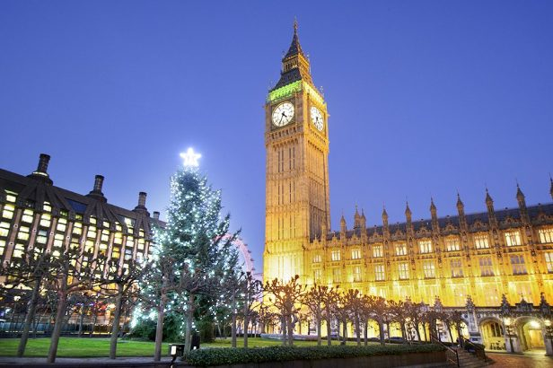 Could This Be The Most Photographed Christmas Tree In The