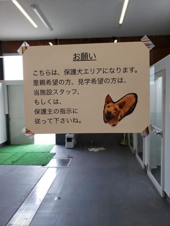 瀬戸内ドッグパーク_a0286340_17415273.jpg