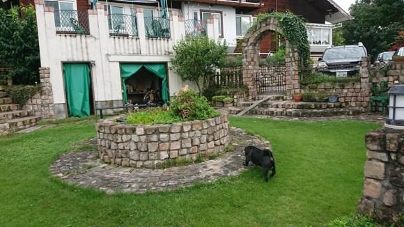 犬と泊まれるペンション モッキングバード_a0286340_11205163.jpg