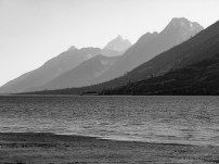 Tetons and shore of Jackson Lake