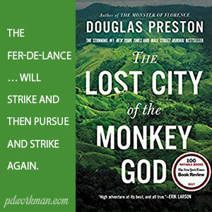 Excerpt from The Lost City of the Monkey God