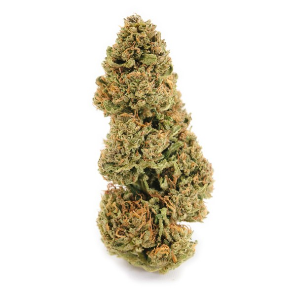 Pennywise High CBD Strain by East Fork Cultivars | Green Box