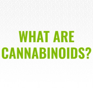 what are cannabinoids