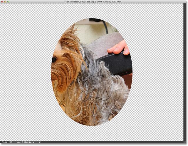 Những hình ảnh sau khi thêm Clipping Mask.  Hình ảnh © 2012 Photoshop Essentials.com