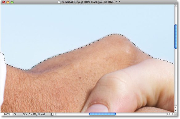 A new area has been added to the existing selection in Photoshop. Image © 2009 Photoshop Essentials.com