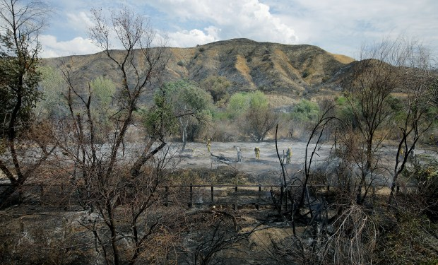 Containment Of 3,800-acre Palmer Fire Now At 50 Percent