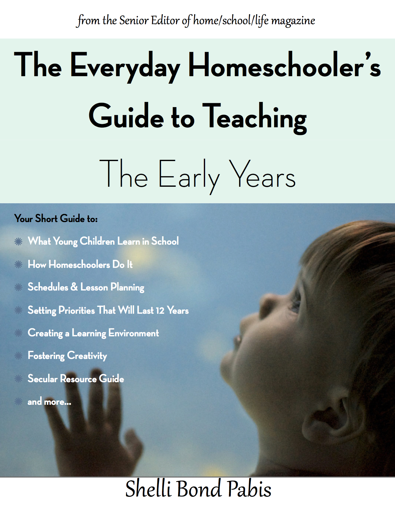 The Everyday Homeschooler S Guide To Teaching The Early Years
