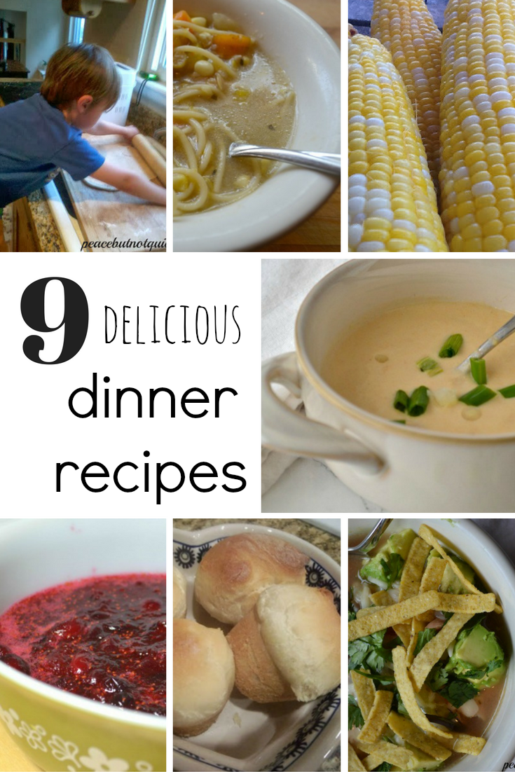 9 dinner recipes-pinterest