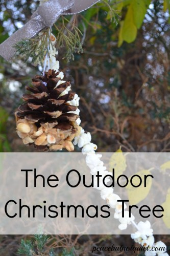 The Outdoor Christmas Tree