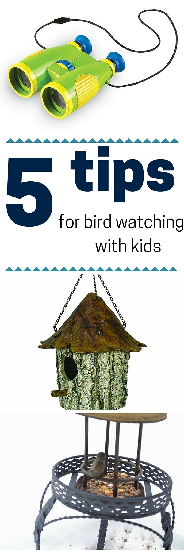 5 tips for birdwatching with kids