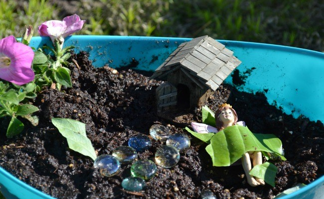 Your Must-Have Fairy Garden Supplies