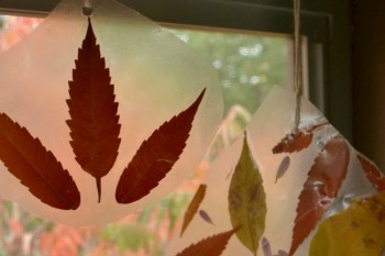 Make These Autumn Suncatchers With Kids This Fall