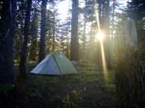 Campsite near Ellis Peak Trailhead