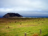 Farm on the Hill