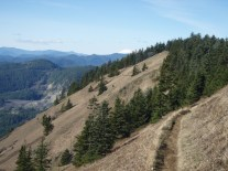 Path along Dog Mountain