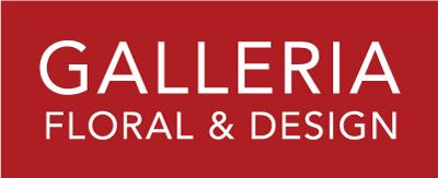 GalleriaLogo