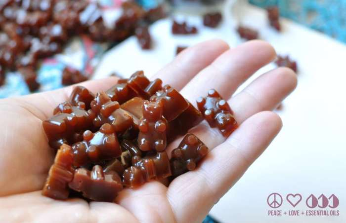 Ningxia Red Gummy Bears - Low Carb, Gluten Free