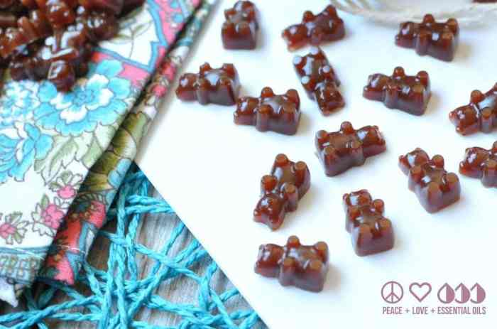 Ningxia Red Gummy Bears Recipe - Low Carb, Gluten Free