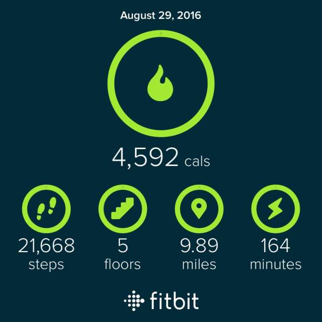 Fit Bit Results for 8/29   Peace Love and Low Carb