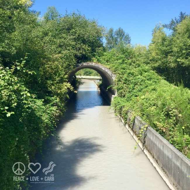 Views From My Morning Walk - White River | Peace Love and Low Carb