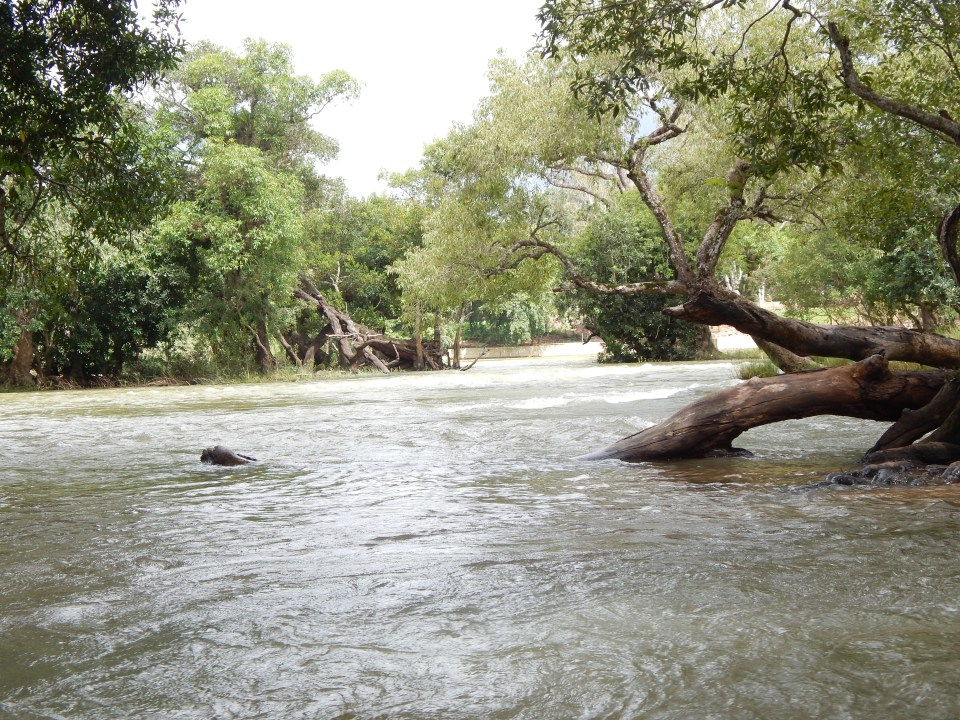 Kaveri River (a large Indian river)